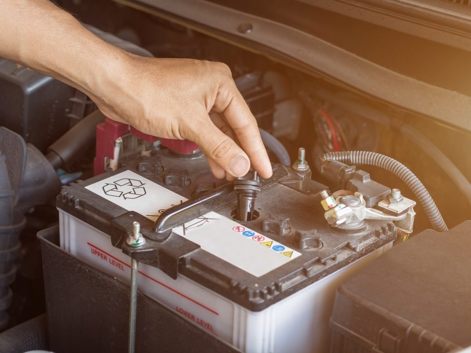 auto mechanic checking the car battery